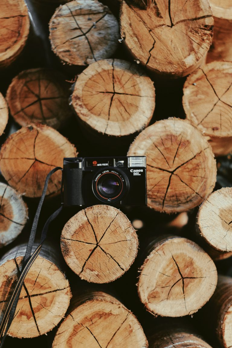 pexels.photo-of-canon-camera-on-wooden-log-2534475
